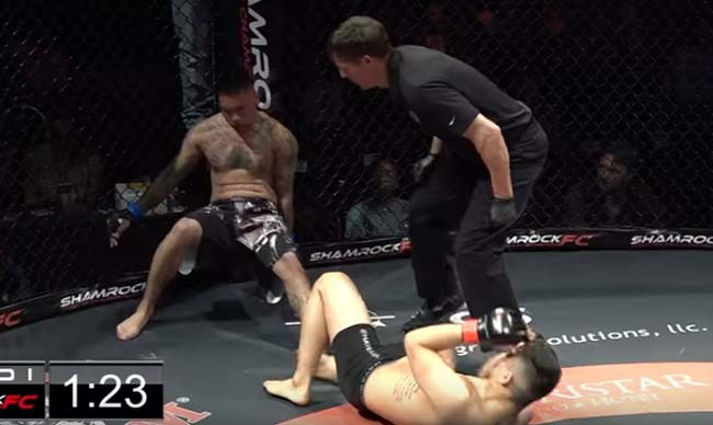 MMA fight that ends with double knockout video.