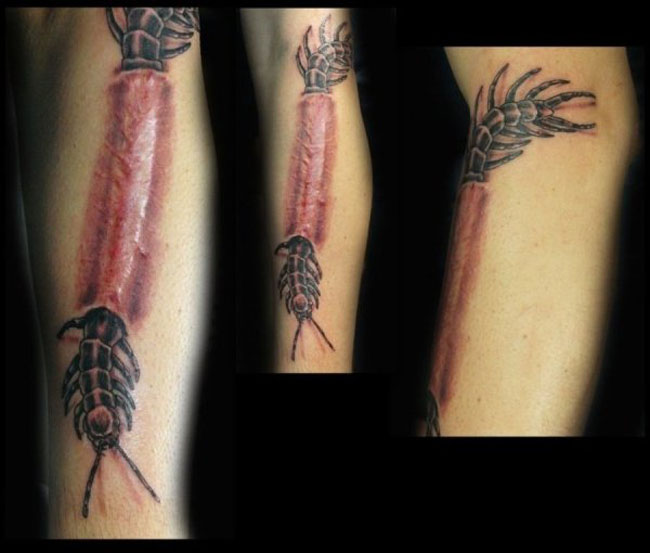 Scar Tattoos photos. (8)