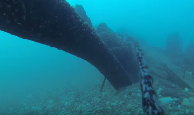 Diver hit by boat video.