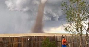 Man mows lawn next to tornado. (1)