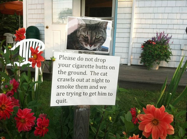 Funny notes left by neighbors. (16)