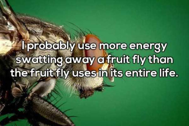 Funny Shower Thoughts That'll Make You Rethink Your Life. (15)
