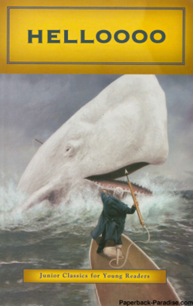 Funny fake book covers. (25)