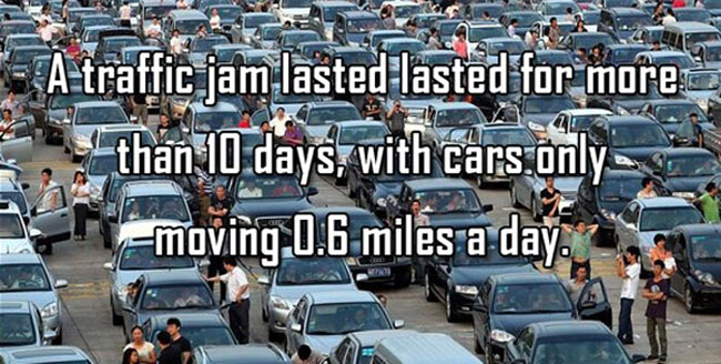 Interesting facts in meme form. (40)