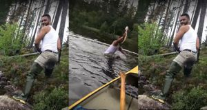 Fisherman Snatches Large Fish out of the Water With His Bare Hands (Video.)